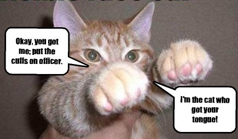 Okay, you got me; put the cuffs on officer. Cleverness Here I'm the cat who got your tongue!