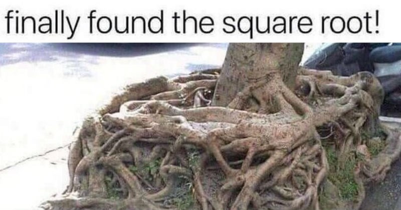 technically correct jokes like a square root literally being a tree root in a square shape