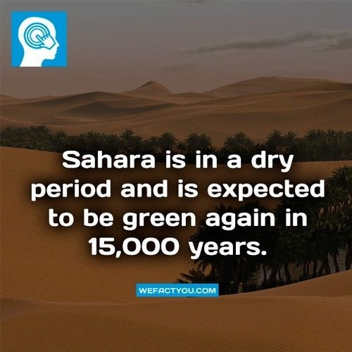 facts sahara funny earth - 7997388544
