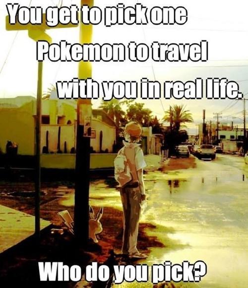 Pokémon,IRL