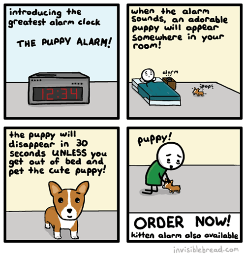 puppies,alarms,web comics