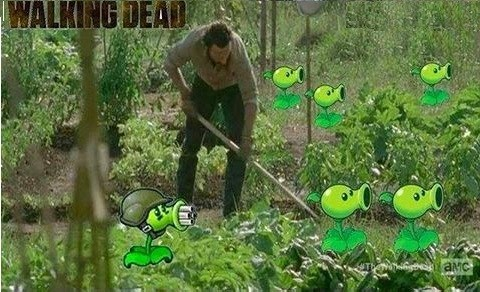 crossover,plants vs zombies,video games,The Walking Dead