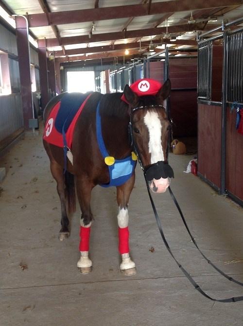 horses mario animals - 7997732608