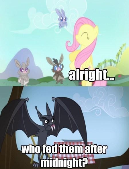 gremlins,bats,fluttershy