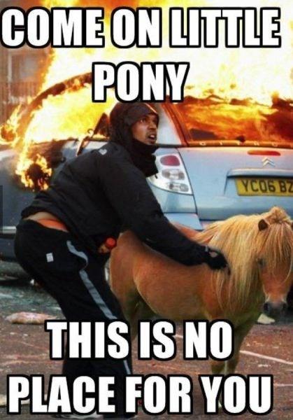 ponies fire horses funny - 7997805312