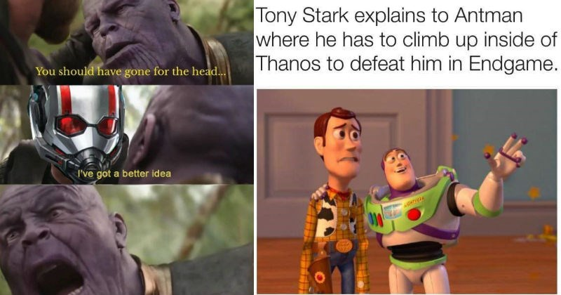 Memes about thanos and the idea that ant man can defeat him by entering via where the sun don't shine