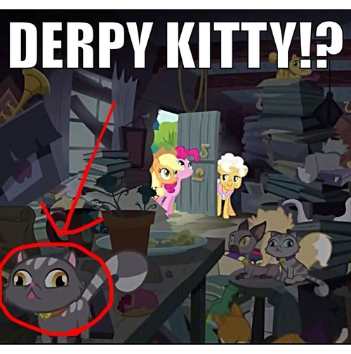 derpy kitty background kitty pinkie apple - 7999848192