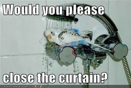 Would you please close the curtain?