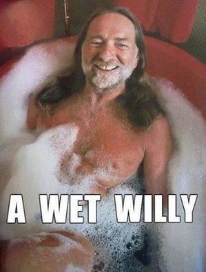 pun willy nelson wet willy - 8001636608