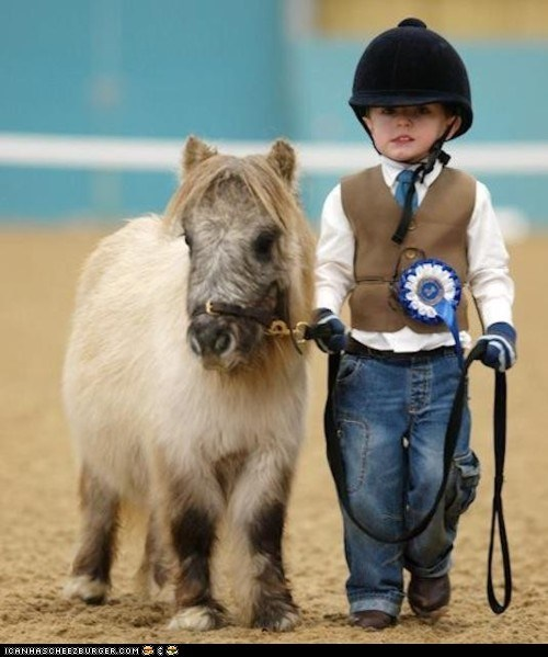 blue ribbon cute children horses ponies