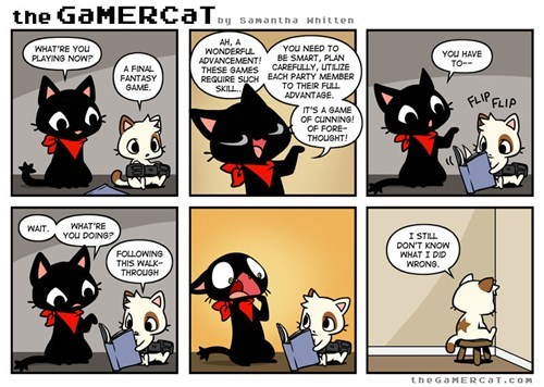 Bad Gamer Kitty!