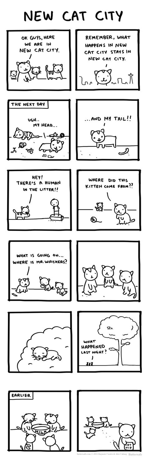 catnip Party Cats web comics