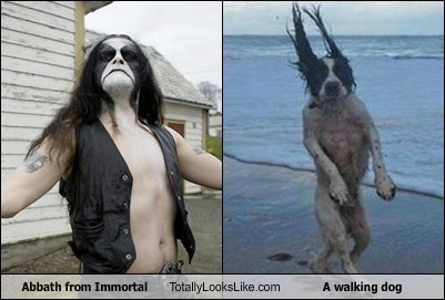 abbath,dogs,immortal,totally looks like