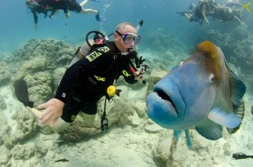 fish photobomb - 8003820800