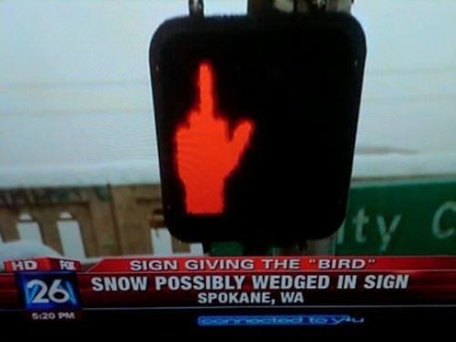 spokane don't walk walk signs - 8003984640