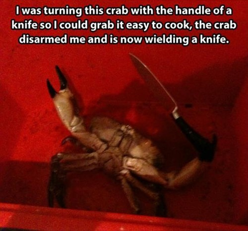 crabs,armed,knife,funny