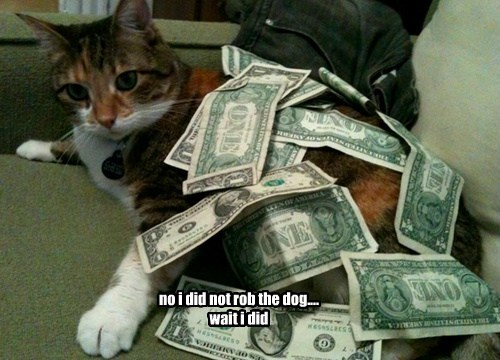 no i did not rob the dog.... wait i did
