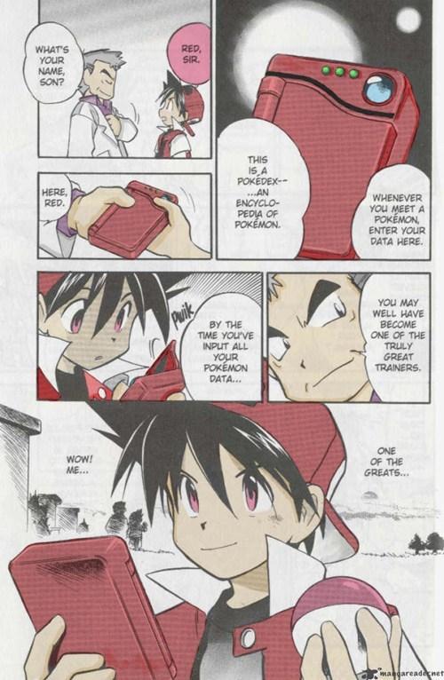 Pokémon manga - 8004302592