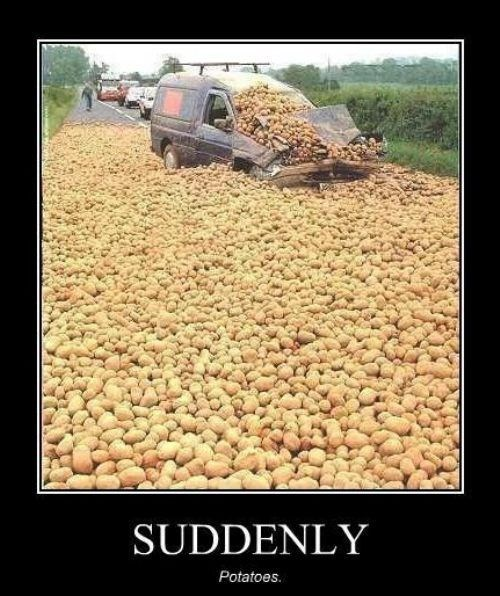 car,funny,suddenly,potatoes,wtf