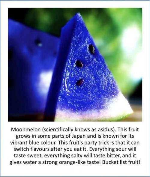 fake hoax twitter watermelon moon melon - 8005690368