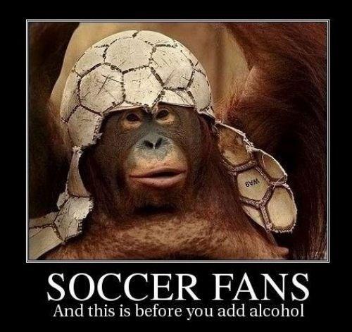 apes hockey funny soccer - 8005691392