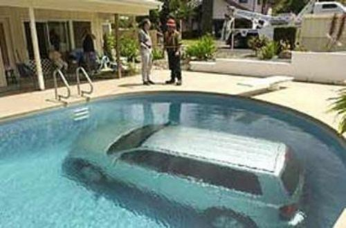 wtf,puns,cars,pools,car pool