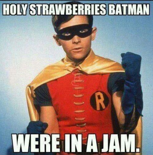 batman dick grayson robin puns - 8006034432