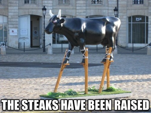 well done puns steaks raised cows - 8006080512
