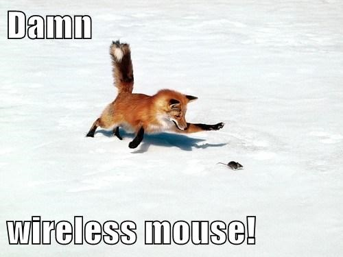 foxes funny puns wireless mouse - 8006227200