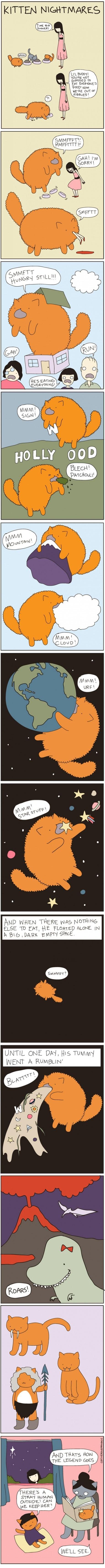 web comics wtf makes sense Cats - 8007308800