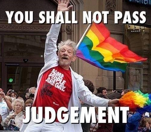 Lord of the Rings ian mckellen gay marriage gandalf you shall not pass - 8007379456