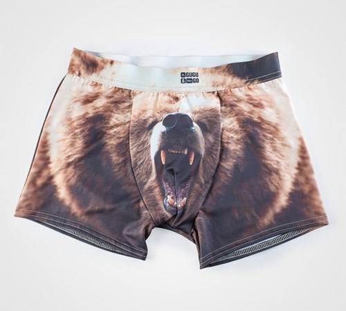 bears,dude parts,design,underwear,dating