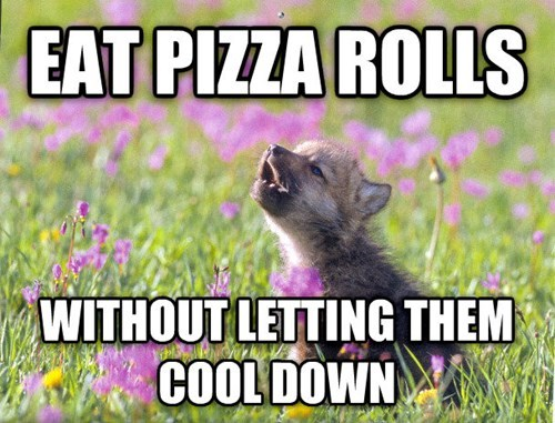 Memes,pizza rolls,baby insanity wolf