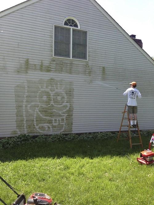 work SpongeBob SquarePants power wash - 8007931392