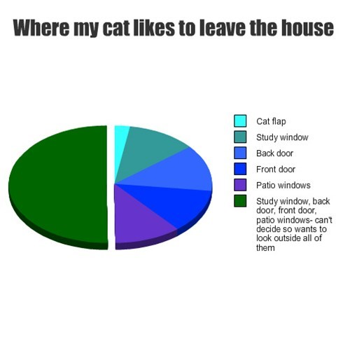 pie charts,Cats
