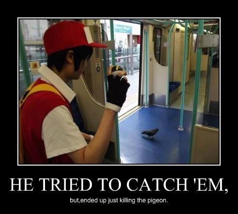 Pokémon birds video games funny - 8009101056