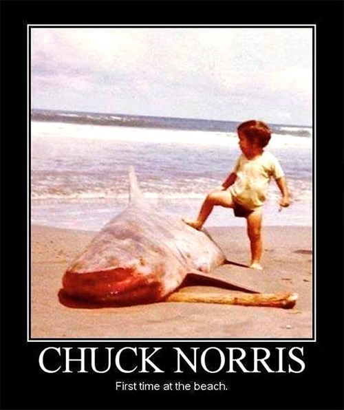diapers,beach,chuck norris,funny