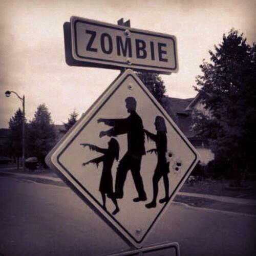 road sign zombie crossing sign lori grimes - 8009421568