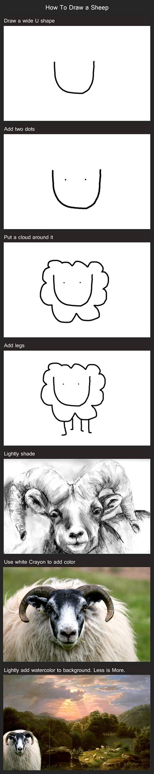 drawing How To sheep - 8009536768