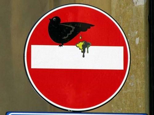 Street Art birds hacked irl - 8009537024