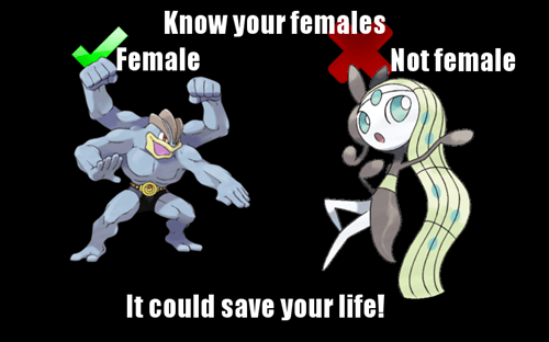 Machamp,Meloetta
