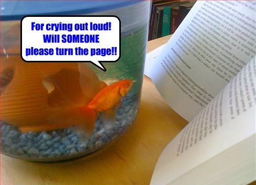reading cute books fish bowl - 8010598144