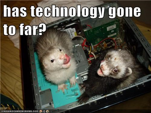 computers,technology,ferrets,funny