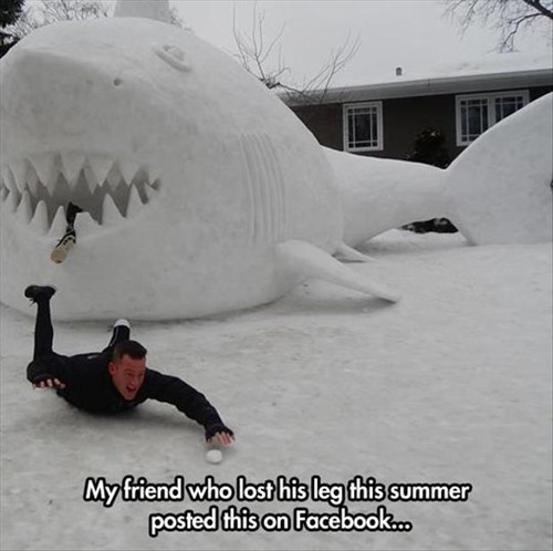 snow sharks facebook winter funny - 8010785792