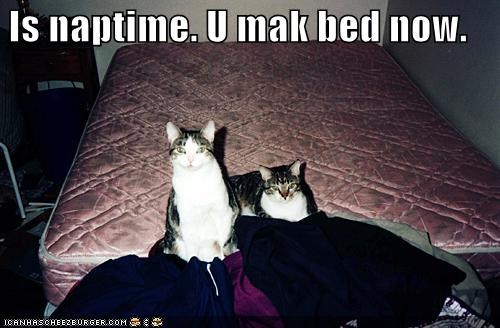 Is naptime. U mak bed now.