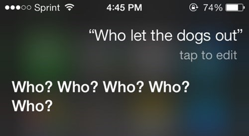 AutocoWrecks,who let the dogs out,siri