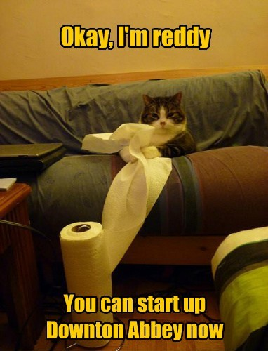 Cats,crying,cute,tissue,Downton Abby