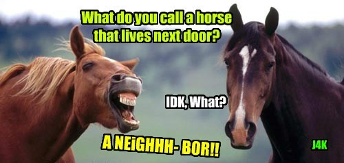 jokes puns horses funny - 8011021824