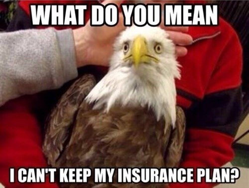 obamacare,health care,insurance