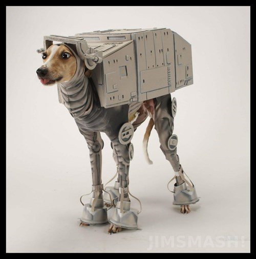 star wars,dog costume,at at